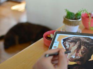 corrieweb tekenen tablet